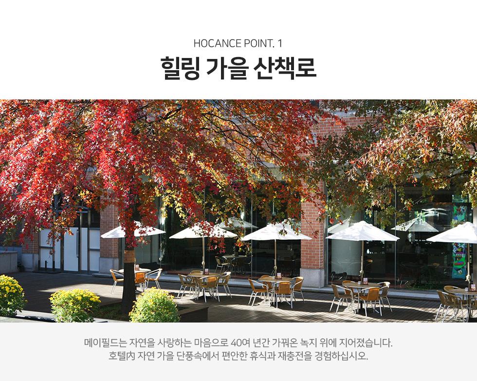 한 눈에 바라보는 서울 도심의 파노라믹 뷰